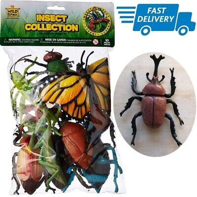 Bug Toys (Plastic Insects For Kids Large Bugs 10 Pieces Set Insect Bug Toys Figures)