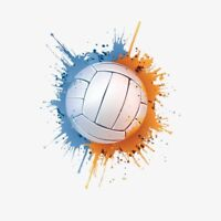 Volleyball players wanted
