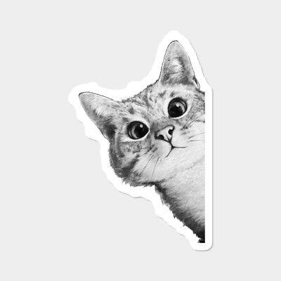 Cat Peeking Out Kitten Pet Lover Kitty Vinyl Decal Wall Decal Phone Car Sticker