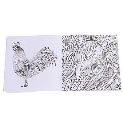 Bird Magic Mirror of Secret Garden Coloring Book 14 Pages Adults Child Arts - DD