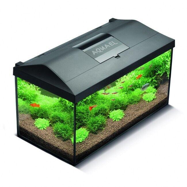 Aquael leddy 75/80 105L fish tank and equipment