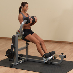 The Body-Solid Ab & Back Machine (white)