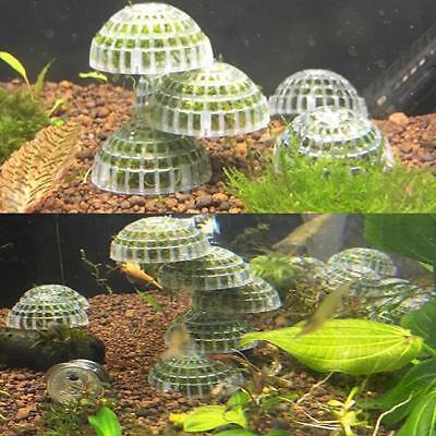 Aquarium Float Moss Ball Filter Decor Fish Tank Shrimp Green Live Plant MA