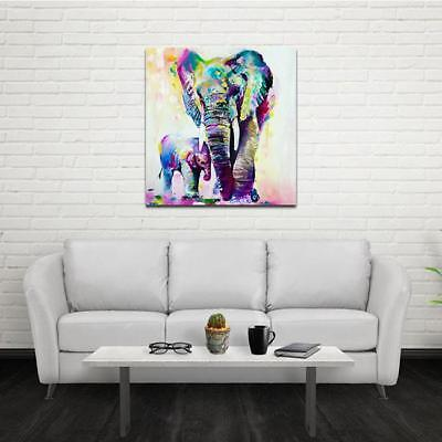 Wall Art Animal Elephant Oil Painting Canvas Picture Living Room Office Decor LD ()