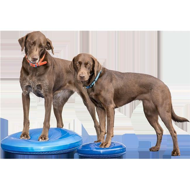 FitPAWS PFPKBDBL14 14 in. 6P Free Balance Disc Blue