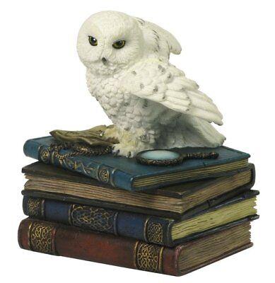 Büchern als Schmuckbox Figur Uhu Eule Buch (Schnee-eule)
