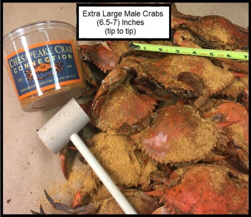 (12) Extra Large Steamed Male Blue Crabs (6.5-7 inches)- Wild Caught  U.S.A
