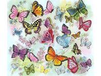 Little Butterflies, Ofsted registered childminder