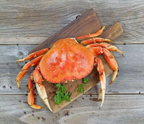 5 -(1.5-2 lbs) Whole Dungeness Crab - [FROZEN]