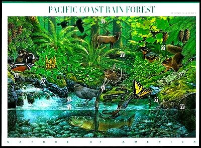 2000- PACIFIC COAST RAIN FOREST -3378 MINT -MNH- SHEET OF 10 POSTAGE STAMPS