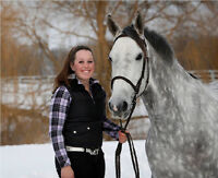 Equine Massage Therapy Services - Newmarket/Peterborough Area