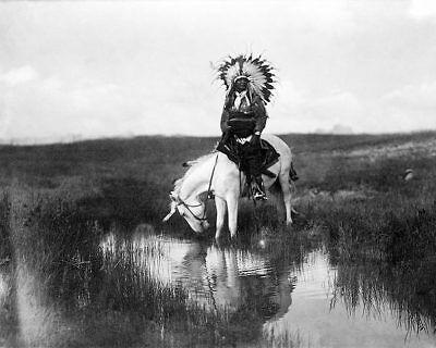 EDWARD S. CURTIS CHEYENNE INDIAN ON HORSE 11x14 SILVER HALIDE PHOTO PRINT