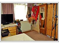Lovey, quiet single room in a nice, clean flat