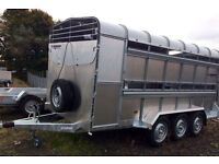 New galvanised indespension livestock cattle trailers or with sheep decks