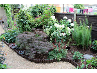 Complete Garden Services & Rubbish Clearance