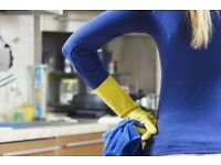 Domestic cleaner - Home cleaning you can trust‎