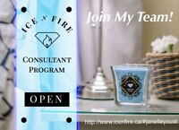 Ice N Fire Consultant