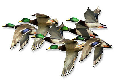 String of Mallards Modern Duck Metal Wall Sculpture Art by Artist Ash Carl