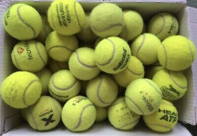 10 Clean Used Tennis Balls For Dogs Play
