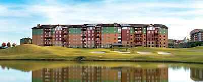 896, 000 Wyndham GREAT Smoky Lodge Points Annually----NO RESERVE ---