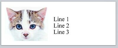 Personalized Address Labels Cute Little Cat Kitten Buy 3 Get 1 Free Jx 225