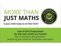 SecondaryReady Maths Tutoring Private SATS Exam Preparation 2017 - free induction pack worth £9.99