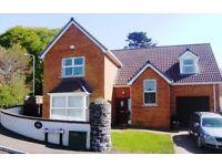 1 KNOWEHEAD DALE, BROUGHSHANE - Detached 2000sqft house walk to award winning village of Broughshane