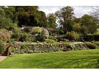 Full time Gardener, Tiverton, Mid Devon