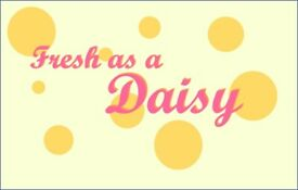Fresh as a Daisy Ironing Services