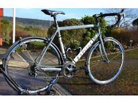 Tifosi Road Bike - Mens 56cm - Excellent Condition