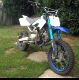 Looking for pit bike
