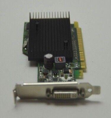 Nvidia Quadro 2000D Pc Graphic Card 3D Cad Solid Works GRA15