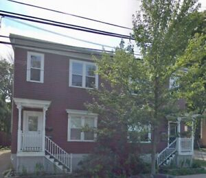Beautiful Summer Sublet with option to renew lease