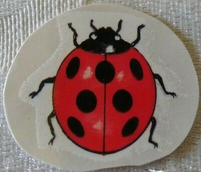 Lady Bug Tattoos (Lot of 43  Lady Bug Temporary Tattoos Colorful FUN for pool or)