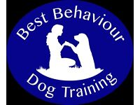 Puppy & Dog Training Classes Ipswich