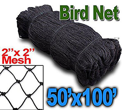 New 100x50 Anti Bird Baseball Poultry Soccer Game Fish Netting 2 Mesh Hole