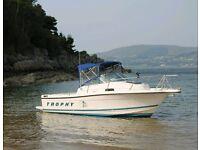 21ft Bayliner trophy sports fisher diesel boat