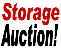 Mini Storage Auction