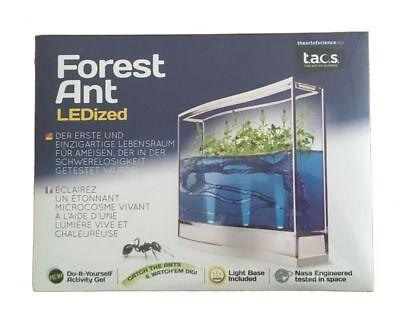 I3°9901 Ameisenterrarium Forest Ant LEDized Farm Antquarium Pflanzen NEU