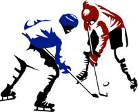 Ice Hockey Summer Shinny Players Wanted