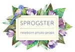 Sprogster Newborn Photo Props