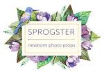 Sprogster Newborn Photo Props