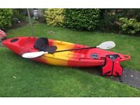 Kayak for sale, includes seat, paddle,strap and life jacket.