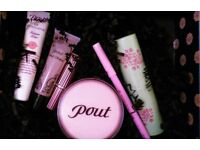 NEW POUT Make-up Designer Lipstick Plump Exfoliator Rouge Eyeliner Enhancer Cosmetic Bag & Gift Box