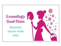 House keeping services cleaning ironing and much more