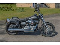 Harley Davidson Steet Bob