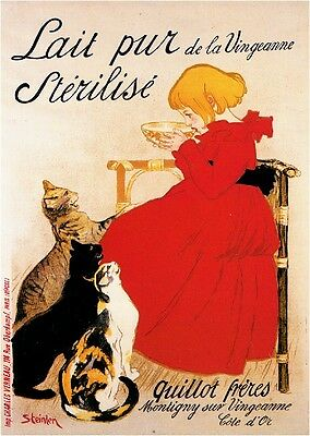 1900's French Lait pur Cats Kittens Food & Wine Advertisement Art Poster Print