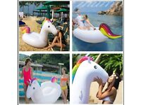 New Inflatable Unicorn £15