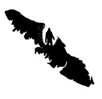 Sasquatch Island Painting. Licensed, Bonded & Insured