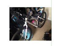 Womens Carerra hybrid bike